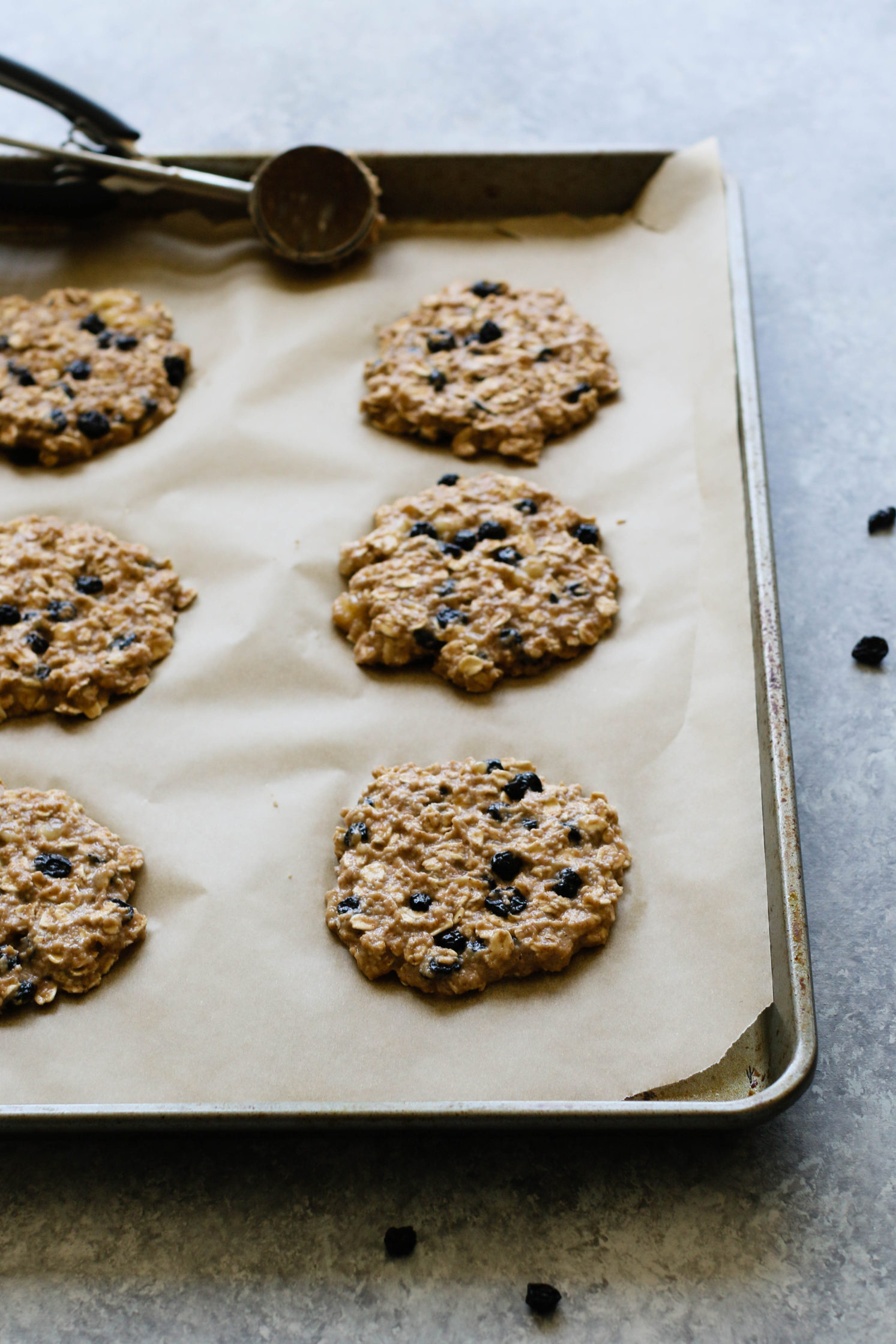 Blueberry Banana Breakfast Cookies (No-Sugar-Added) by Flora & Vino
